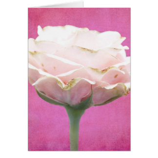 Textured Pink Rose Card
