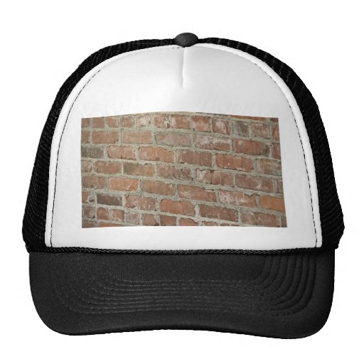 Textured Red brick wall Hat