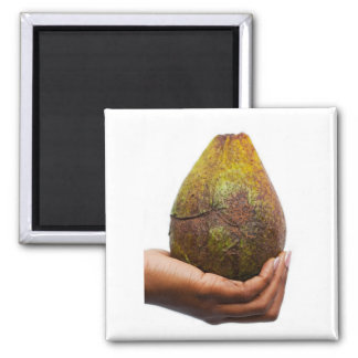 textured treat 2 inch square magnet