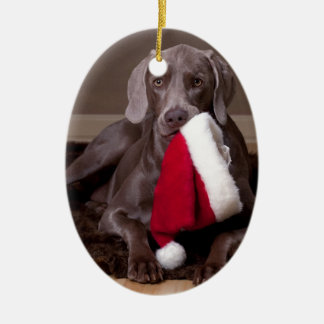 Teyla the Weimaraner and Santa Hat Christmas Tree Ornament