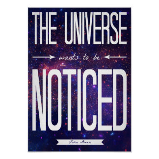 TFiOS The Universe Wants to be Noticed Poster