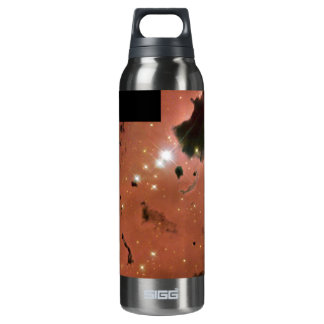 Thackeray's Globules- Dense, Opaque Dust Clouds 16 Oz Insulated SIGG Thermos Water Bottle