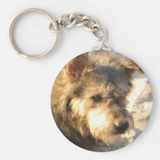 Thai Beach Dog Keychain