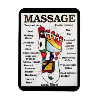 Thai Foot Massage / Reflexology / Zone Therapy Vinyl Magnets