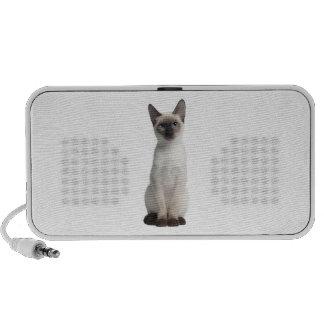 Thai kitten mp3 speakers