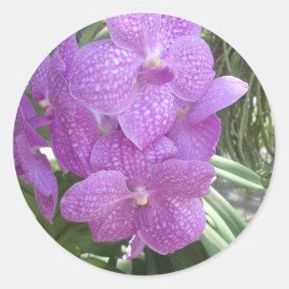 Thai Orchid Classic Round Sticker
