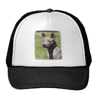 Thai Ridgeback 9Y815D-302 Trucker Hat