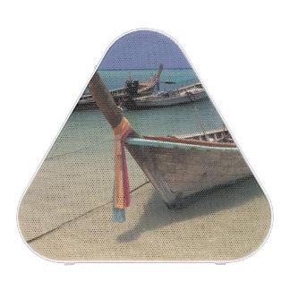 Thailand, Andaman Sea, Ko Phi Phi Island, Speaker