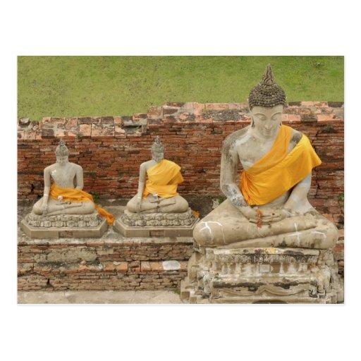 Thailand, Ayutthaya. Statues of sitting buddhas Postcards