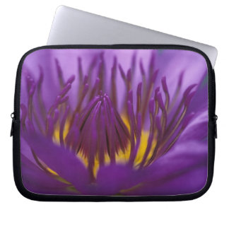 Thailand, Bangkok, Purple and yellow lotus 2 Laptop Sleeve