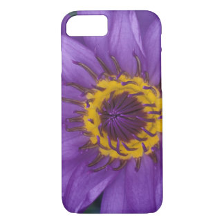Thailand, Bangkok, Purple and yellow lotus iPhone 8/7 Case