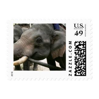 Thailand Elephants 1st Class Postage Stamp