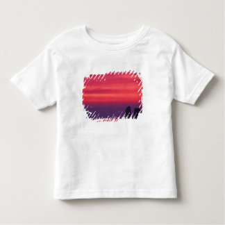 Thailand, Phang Nga Bay. Pink sky reflected in Toddler T-shirt