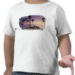 Thailand, Phuket Island. Shirts