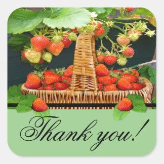 ~Thank de la cesta de Sstrawberry usted ajusta al Pegatina Cuadrada