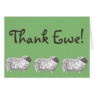 Thank Ewe! Sheep Greeting Card