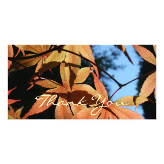 Thank You (2) - Japanese Maple Card