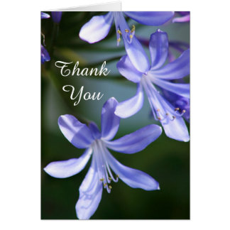 Thank You Agapanthus blooms greeting cards
