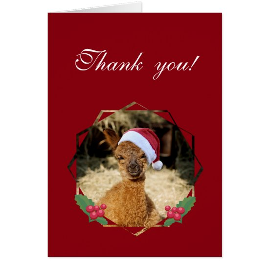 Thank You Alpaca Christmas Note Cards