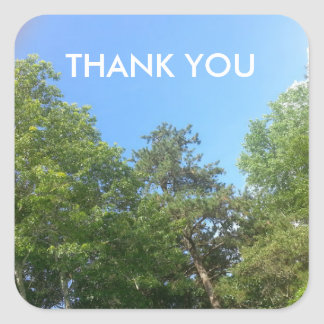 Thank You Astronomy Sky Cloud Tree Scene Sticker