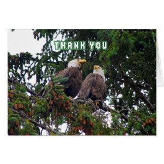 Thank You, Bald Eagles Card