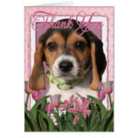 Thank You - Beagle Puppy Cards