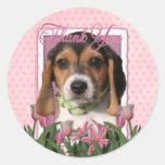 Thank You - Beagle Puppy Round Stickers