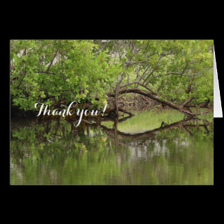 Thank You • Believe in Magic • Hearts in Nature Card