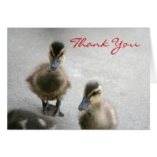 Thank You, Blank, Duckling Card