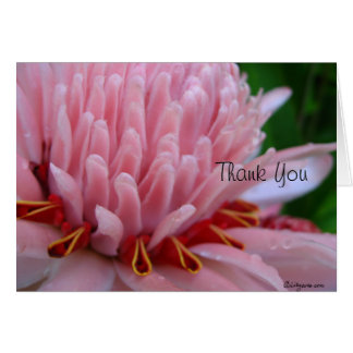 Thank You Bloom Me Away Pink Ginger Card