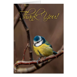 Thank You Blue-Tit Greeting Card