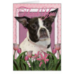 Thank You - Boston & Rat Terrier - Jazy Cards