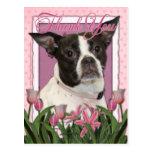 Thank You - Boston & Rat Terrier - Jazy Post Cards