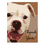 Thank  you Boxer Dog Art postcard