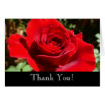 Thank You Bright Red Rose Card