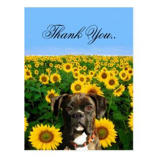 Thank You Brindle boxer postcard