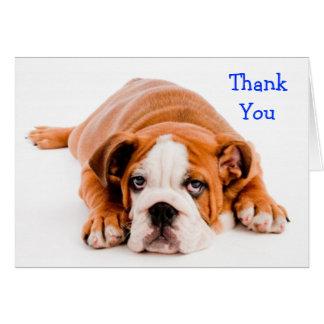 Thank You Bulldog Greeting Card - Kindness Verse