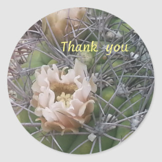 thank you cactus flower sticker