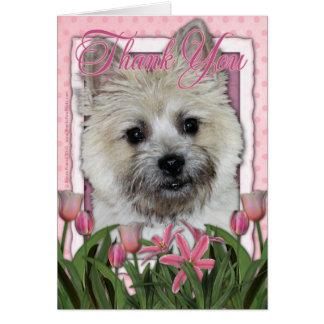 Thank You - Cairn Terrier - Teddy_Bear Card