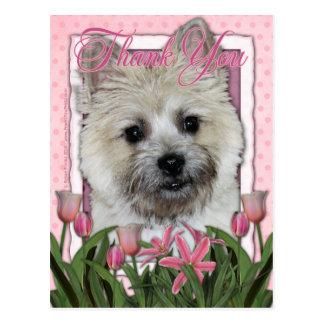Thank You - Cairn Terrier - Teddy_Bear Postcard