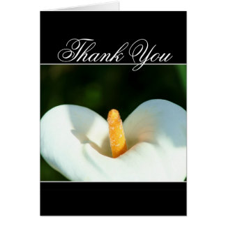 Thank You Calla Lily greeting card