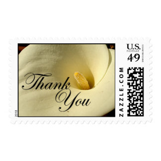 Thank You Calla Lily Postage
