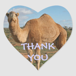 THANK YOU CAMEL HEART STICKER