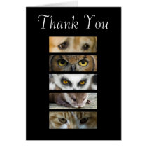 Thank You Card - Animals Eyes