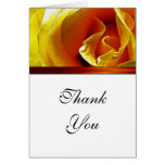Thank You Card Antique Yellow Rose