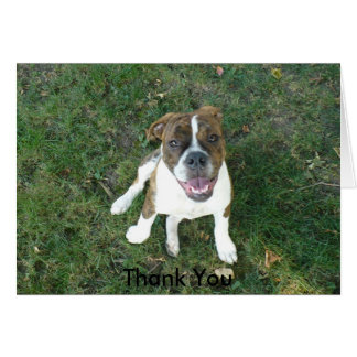 Thank You Card (Bow Wow!)
