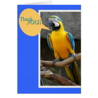 Thank you Card from Parrot