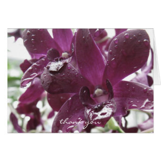 Thank You Card ~ Orchids ~ Floral Photography Card
