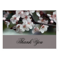 thank you card plum flowers greeting card