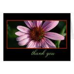 Thank You Card~ Purple Coneflower